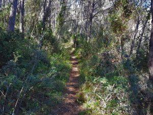 ruta bici tarragona ermita sta maria alba