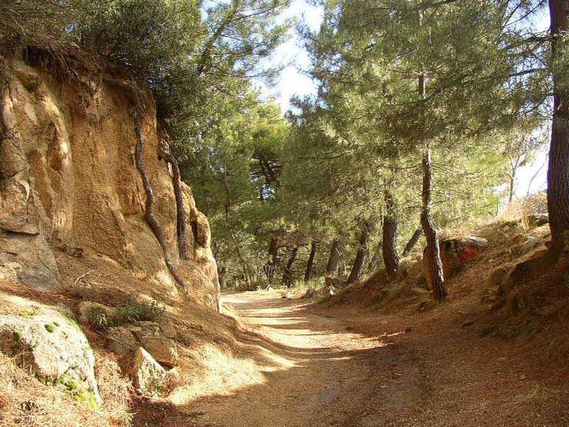 Camino a Becerril de LA Sierra
