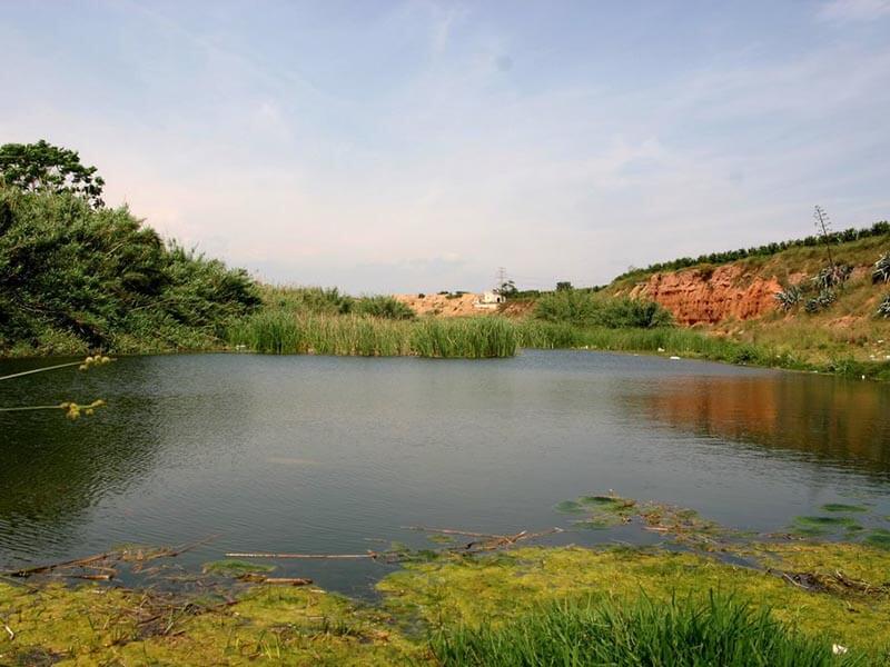 Laguna Carraixet