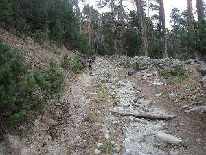 Camino Viejo Del Paular