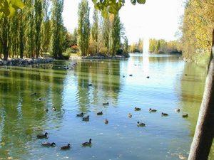 Lago del Parque El Soto de Móstoles