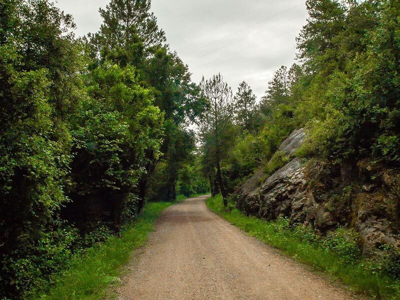 Pista de la vía Verde del Llobregat