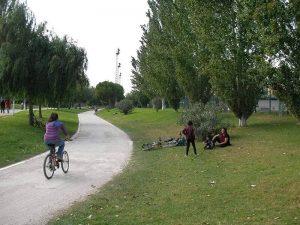 Descanso en el cesped del jardin rio Turia