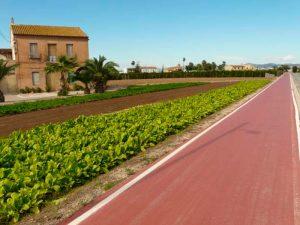 La Vía Verde de Xurra a su paso por Almàssera