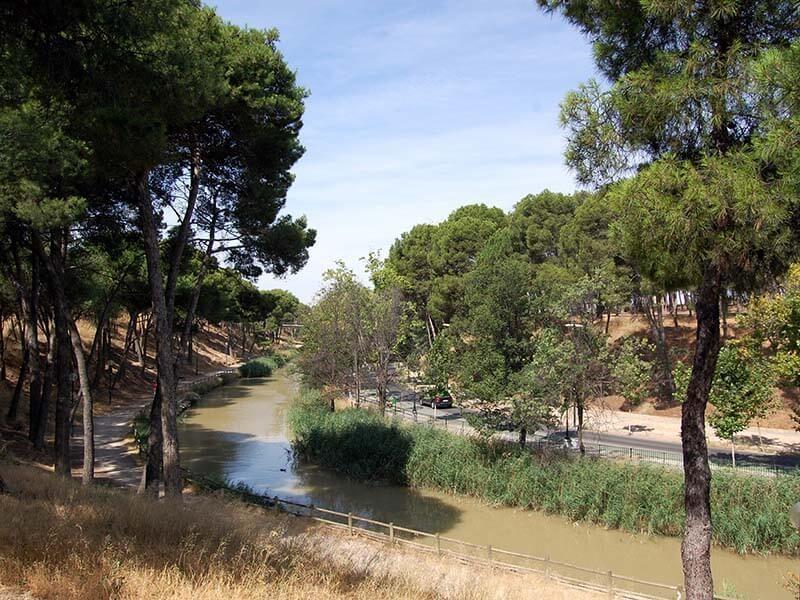 Canal Imperial de Aragón - Pinares de Venecia