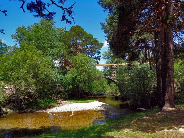 El Puente de los Canales en el Río Eresma