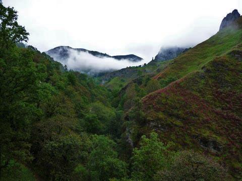 El valle del río Miera