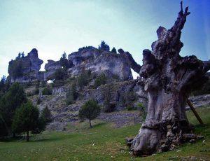 Entorno ermita de San Bartolome
