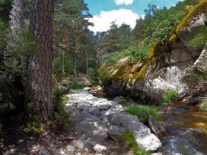Tramo de losas de granito en La Senda de Pesquerias Reales