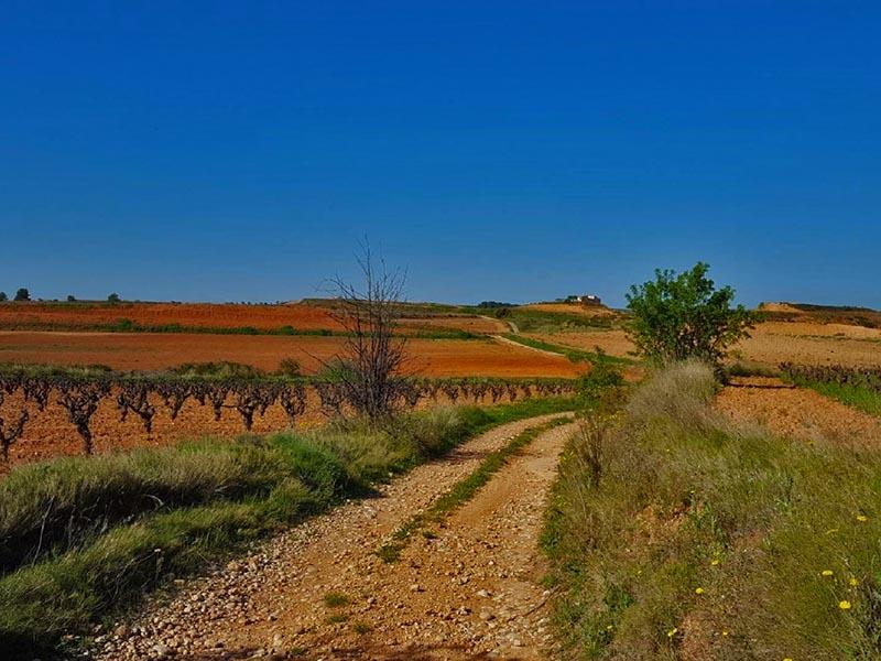ruta bici tarragona