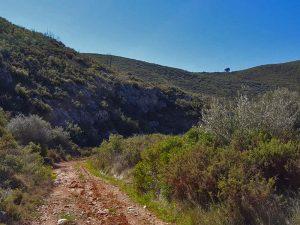 ruta ermita sta maria alba