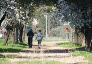 Tranquila Vía Verde Ciudad Real Poblete