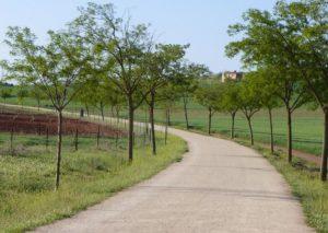 Prado Vía Verde Ciudad Real Poblete