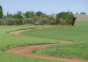 ZigZag Vía Verde Ciudad Real Poblete