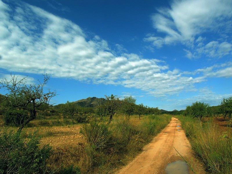 04 Camino del Margajón
