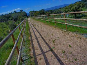 Camino Vía Verde