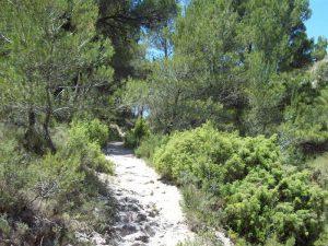 Senda por el barranco de Badallet en el tramo que va por ladera
