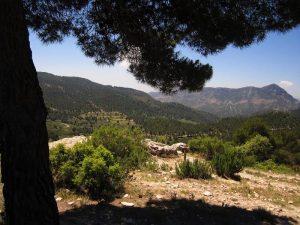 Vistas Sierra de Cati (Castalla)