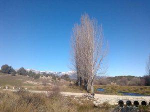 paso del rio Manzanares