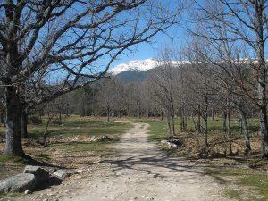 Camino con vistas a la Sierra