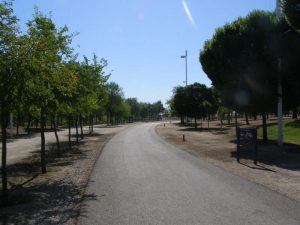 zona asfaltada