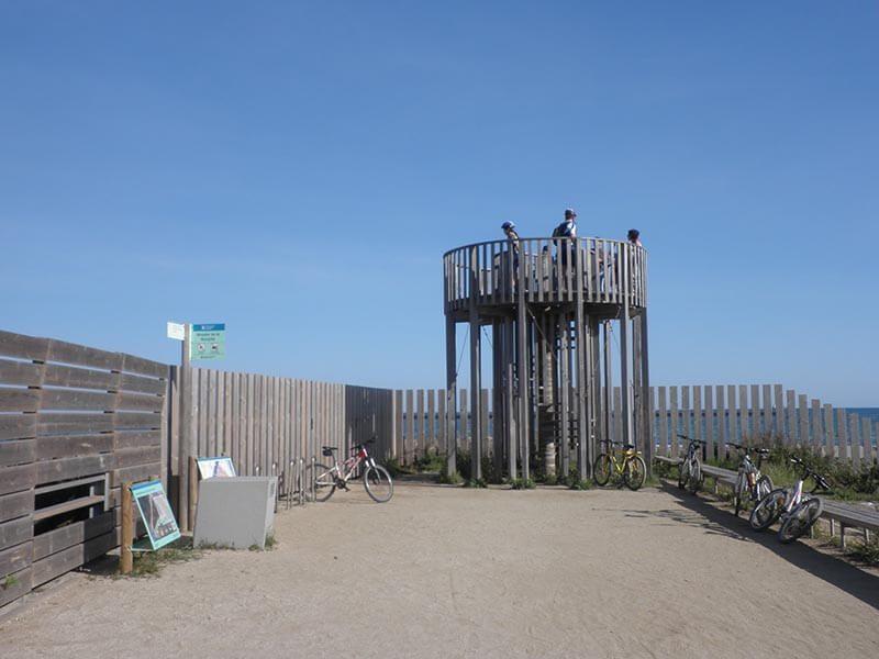 Mirador de Bunyola - Delta del Llobregat en bici