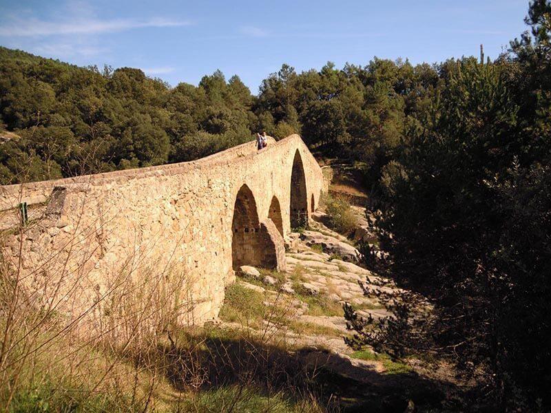 Puente gótico de Pedret