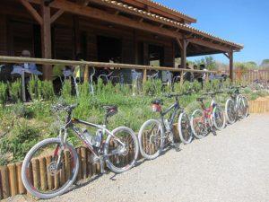Bar Parque Fluvial del Turia