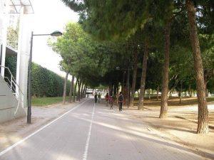 Carril Bici por el cauce del Rio Turia
