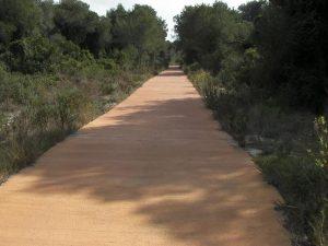 Carril bici entre El Saler y El Palmar
