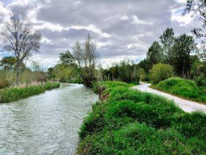 Río y Camino - Parque Fluvial del Turia