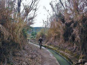 Ruta en bici por Xátiva - Camino Acequia
