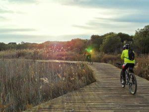 Ruta en bici por la Albufera