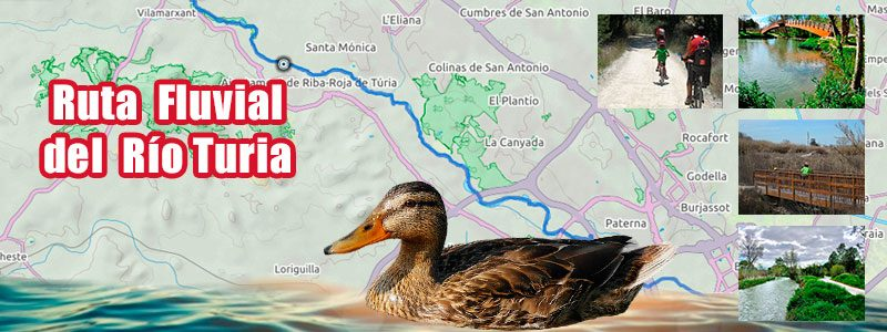 Ruta en bici con niños por Valencia - Parque Fluvial del Turia