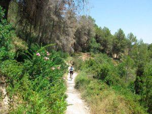 Senda final hacia Xàtiva en bici