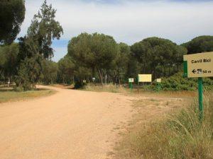 Carril Ciclista por los Pinares de Aznalcázar