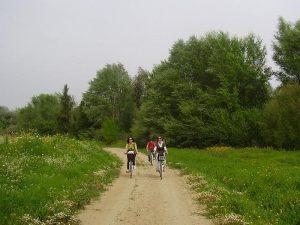 En bici por el Corredor Verde del Guadiamar