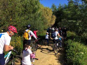 Paseo en Bici por el sendero del Guadiamar