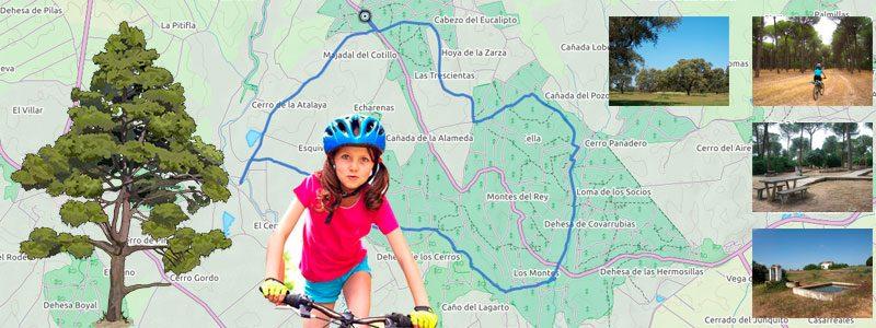 Ruta en bici con niños por los Pinares de Aznalcázar - Sevilla