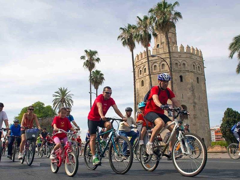 Torre del Oro de Sevilla en bici - ruta Turística