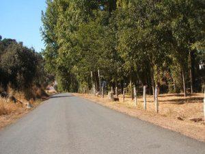Zona de asfalto ruta en bici a San Nicolás