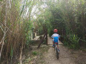 Puente en la senda del Galacho de Juslibol en Bici