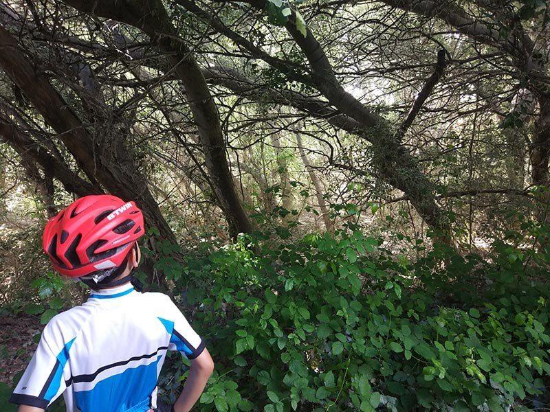 Dejamos la bici para contemplar el Galacho de Juslibol