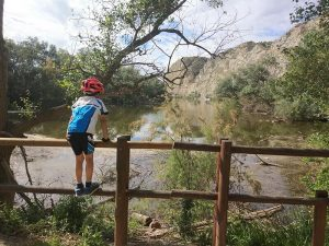 Contemplando el Galacho de Juslibol desde el Puente