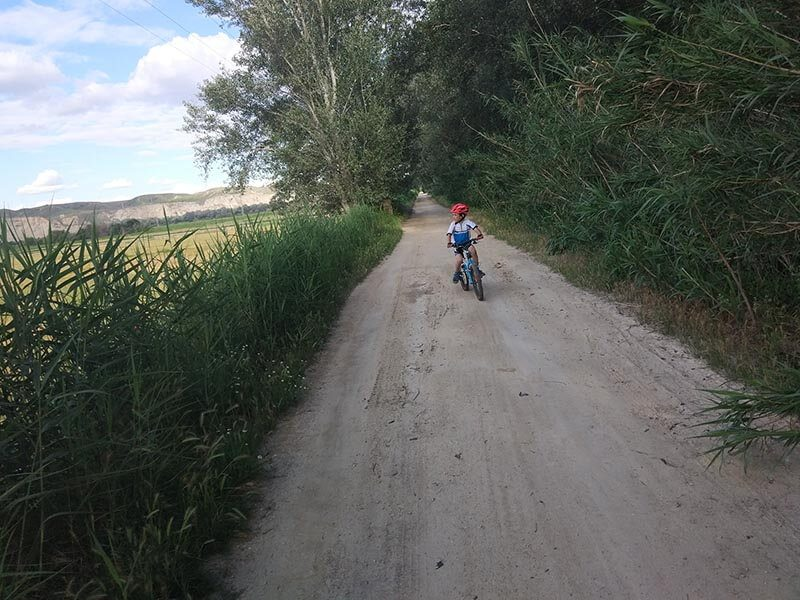 Continuamos por pista junto al Soto del Ebro