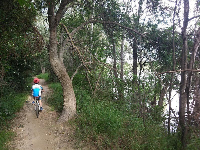 Siempre junto al río por el Soto del Ebro