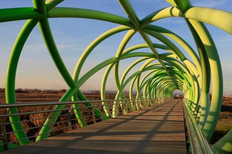 Puente del Bicentenario - Zaragoza - La Alfranca