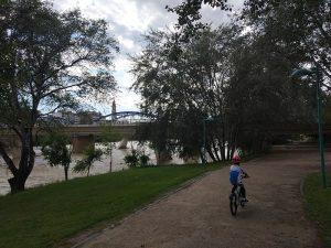 Puente de Hierro al fondo - Vuelta al Ebro en Bici