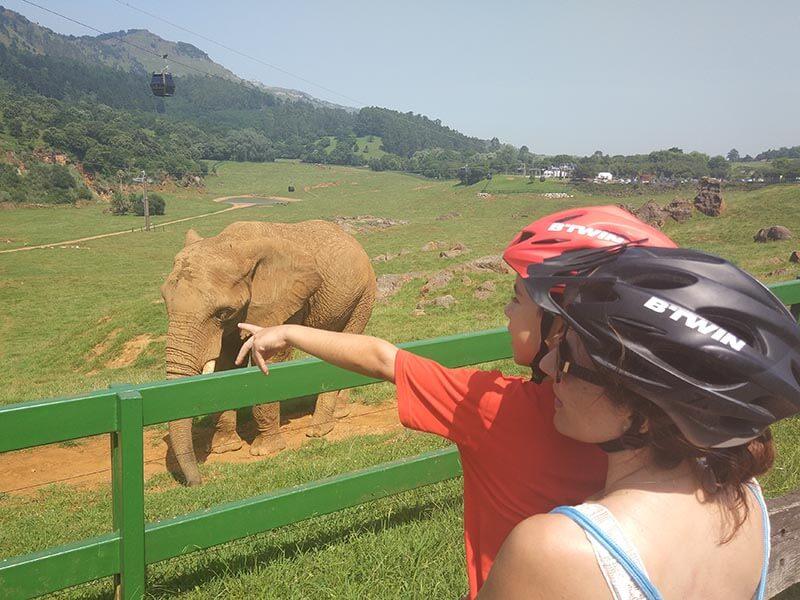 Cabárceno en bici, elefantes