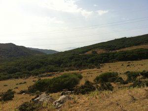 Ruta BTT El Palancar -Vistas